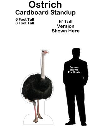 Ostrich Cardboard Cutout Standup Prop