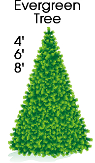 Evergreen Tree Cardboard Cutout Standup Prop