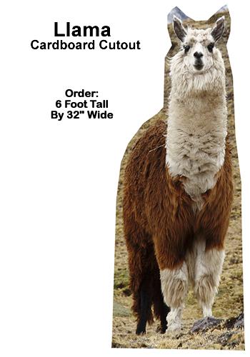 Llama Cardboard Cutout Standup Prop