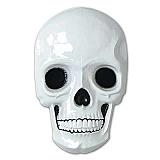 "Plastic Skull 21"""
