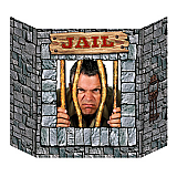"Jail Photo Prop 3' 1"" x 25"""