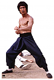 Bruce Lee Fight Stance - Bruce Lee Cardboard Cutout Standup Prop