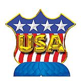 USA Shield Centerpiece