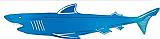 """Foil Shark Silhouette 32"""""""