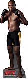 Anderson Silva - UFC Cardboard Cutout Standup Prop