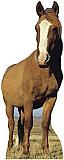 Horse Cardboard Cutout Standup Prop