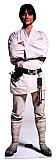 Luke Skywalker Cardboard Cutout/Standup