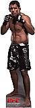 Antonio Nogueira - UFC Cardboard Cutout Standup Prop