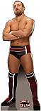Daniel Bryan - WWE Cardboard Cutout Standup Prop
